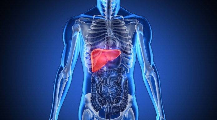 Liver Disease Diagnosis